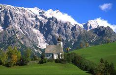 alpenblumen österreich - Recherche Google
