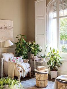 Sala de lectura llena de plantas de interior