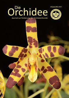 Die Orchidee 1/2017 ist erschienen einen Probeartikel gibt es hier: http://orchidee.de/wp-content/uploads/2017/01/probeartikel_01-2017.pdf