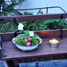 "Mariette (@tulipablomsterverkstad) på Instagram: ""Nytt på bloggen.🍎🌲🕯 #tulipablomsterverkstad #julinspiration #christmasdecorations #lantliv…"" Christmas Inspiration, Serving Bowls, Tableware, Instagram Posts, Dinnerware, Tablewares, Dishes, Place Settings, Mixing Bowls"