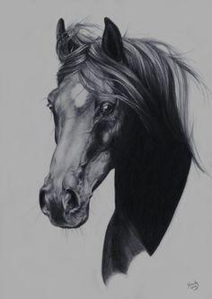 Sketch by Yaveth