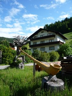 Katschberg, Alphorn Berg, Holiday, Plants, Summer, Travel, Tourism, Germany, Pictures, Vacation