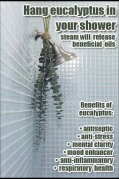 This is a great way to help with respiratory issues.