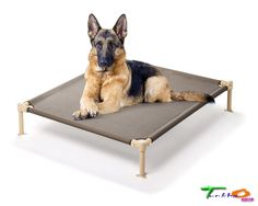 Hugs Pet Large Dogs Beds Sleep Cool Cot In OutDoor Elevated Lightweight Strong #HugsPetProducts
