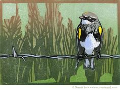 """Wired (Myrtle warbler)  Reduction linocut, Edition of 10 (variable)  Image size 5"""" x 7"""", hand printed on Hosho paper"""