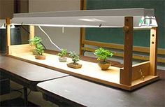 flourescent lightstand