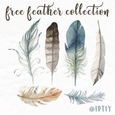 Free Hand Drawn Feather Collection: This gorgeous feather collection is absolutely free and absolutely yours to use a personal and commercial use! To Download click the following: 1    2    3    4    5 Be Sure To Subscribe To ReceiveExclusive Freebies and Post! :) Enjoy!...Read More »