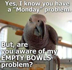 Empty Bowls Problem