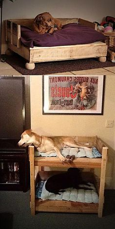 14 best dog bed stairs images under stairs dog house stairs rh pinterest com