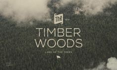 The Timber Wood land of the trees