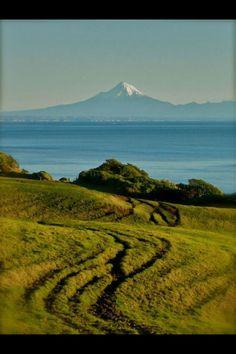 from the farm: mount #taranaki in NZ
