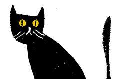 Cat, by Rob Hodgson
