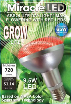 Miracle LED 603090 Commercial Hydroponic Ultra Grow Lite, Red For Sale Hydroponic Farming, Hydroponic Growing, Aquaponics Diy, Aquaponics System, Permaculture, Grow Light Bulbs, Led Grow Lights, Solar Lights, Indoor Vegetable Gardening