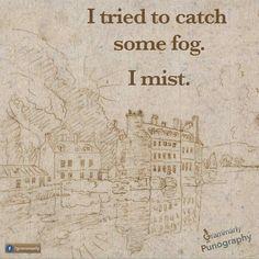 I mist pun