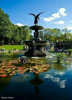 Fountain on Central Park - New York City