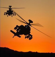 AH64D Apache Longbows at dusk. Doesn't get more romantic than that.