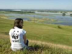 Ioana Bețieanu, un aliat de valoare al organizației WWF România