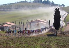 Tuscany's strade bianche - road biking of course!