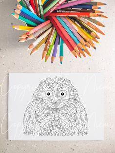 Paisley Coloring Pages, Owl Coloring Pages, Printable Coloring Pages, Big Wall Art, Wall Art Crafts, Mandala Print, Landscape Prints, Photo Craft, Quote Prints