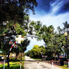 A top small walking community, Dunedin, FL is the site of the Highland Games, Dunedin Brewery and the Toronto Blue Jays spring training. Honeymoon Island, Highland Games, Clearwater Florida, Spring Training, Bike Trails, Beach Trip, State Parks, Sidewalk
