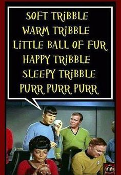 the Trouble with Tribbles - one of the best star Trek episdodes ever.Big Bang & Star Trek best of both worlds♡♡♡ Big Bang Theory, Star Trek Tos, Star Wars, To Infinity And Beyond, Bigbang, Batgirl, Science Fiction, Science Humor, I Laughed