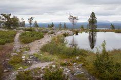 Särkitunturi, Lapland, Finland