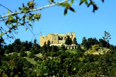 Ajloun Castle   #Travel #tourism #jo