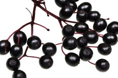"""Elderberries look like a whole lot like blueberries, and while they're nowhere near as well-known, they enjoy a comparable reputation as a superfood among nutrition insiders. That's because the small, dark berries are immune-boosting powerhouses, high in """"health-giving"""" antioxidants, like flavonoids (which have serious anti-inflammatory, anti-microbial properties), explainsTipper Lewis, lead herbalist at the famed British…"""