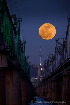 moon by chaim potok pdf
