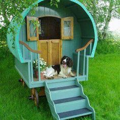 This one is really a awesome dog house