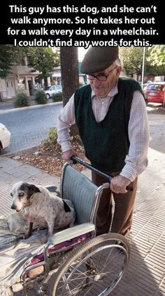 The dog can't walk anymore, so he takes her for a walk with the wheelchair every day. STOP THE CUTENESS