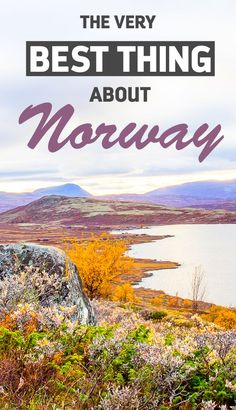 The Very Best Thing About Norway - Is it the Norwegian fjords? The Northern Lights? Norwegian food? Trolls? Guess again!