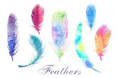 Image result for WATER COLOR OF FEATHERS