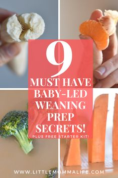 Nine Must See Secrets for Baby Led Weaning Food Prep little momma life Nine Must See Secrets for Baby Led Weaning Food Prep little momma life Megan Bristow Little Momma Life nbsp hellip Baby Led Weaning 7 Months, Baby Led Weaning First Foods, Baby First Foods, Baby Finger Foods, Baby Snacks, Sweet Potato Spinach, Baby Led Weaning Breakfast, Fingerfood Baby, Strawberry Baby