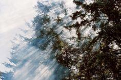 Peter Sutherland,Dusty Trail, viaWouter Van de...   Gyroscope Prints