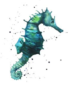 """""""Seahorse In Teal"""" by Alison Fennell on Fine Art America"""