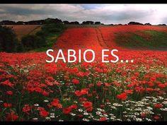 Sabio es - YouTube