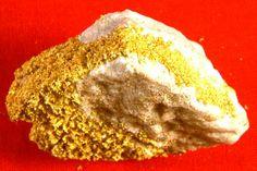 Museum Grade Gold in Quartz Specimen from Burns Creek