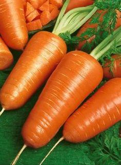 500 Bulk Carrot Seed Chantenay Red Cored by BeanAcresSeeds