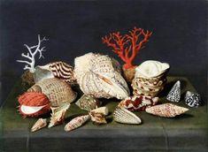 Collection Frits Lugt, Jacques Linard (1597–1645), Natura morta con conchiglie e coralli