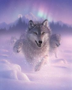 Wolves by painters Collin Bogle - Anime Wolf Anime Wolf, Wolf Photos, Wolf Pictures, Beautiful Wolves, Animals Beautiful, Wolves In Love, Beautiful Creatures, Tier Wolf, Wolf Painting