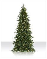 Full and lush, the Kennedy Fir LED Artificial Christmas Tree is a gorgeous centerpiece for your holiday decor. Get yours at Christmas Tree Market! Slim Artificial Christmas Trees, Fir Christmas Tree, Fir Tree, Christmas Decorations, Holiday Decor, Centerpieces, Lights, Decorating Ideas, Led