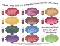 Young Living Essential Oils:  Everyday Essential Oils Collection