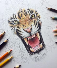 Behind The Scenes By vexx Realistic Animal Drawings, Pencil Drawings Of Animals, Animal Sketches, Vexx Art, Ink Art, Art Drawings Sketches Simple, Colorful Drawings, Pencil Tattoo, Doddle Art