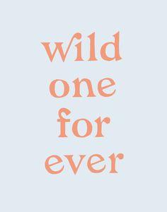 """""""wild one forever"""" design love fest"""