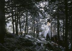 Tipi in the Alaskan woods. Contributed by Hiroyuki Yamada.