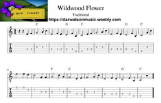 Wildwood Flower Easy Guitar Tab / Sheet Music + Chords Easy Guitar Tabs, Guitar Tabs Songs, Easy Guitar Songs, Music Chords, Aiken Drum, Wildwood Flower, Lord Of The Dance, Song Sheet, Old Folks