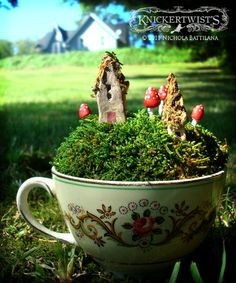 Teeny houses, little toadstools, moss and teacups :)