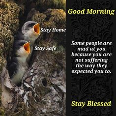 Happy Good Morning Quotes, Good Morning Msg, Morning Thoughts, Assalamualaikum Image, Morning Prayers, Morning Images, Mornings, Quotations, Inspirational Quotes