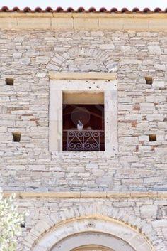 Pigeons on Samos